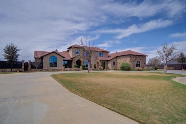 6002 County Road 1440, Lubbock, TX 79407 (MLS #201903008) :: Reside in Lubbock   Keller Williams Realty