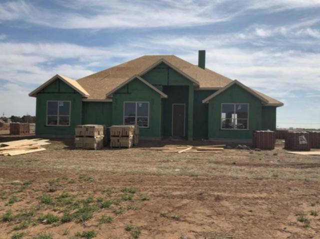 13401 Gardner Avenue, Lubbock, TX 79424 (MLS #201903119) :: Reside in Lubbock   Keller Williams Realty