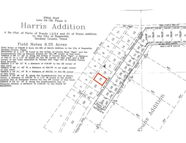 1-Lot 19 Timmons, Ropesville, TX 79358 (MLS #201903180) :: Lyons Realty