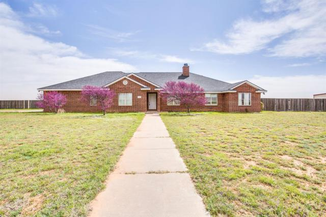 13802 N County Road 1400, Shallowater, TX 79363 (MLS #201903196) :: Reside in Lubbock | Keller Williams Realty