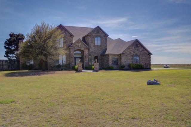 5601 County Road 7920, Lubbock, TX 79424 (MLS #201903223) :: Lyons Realty