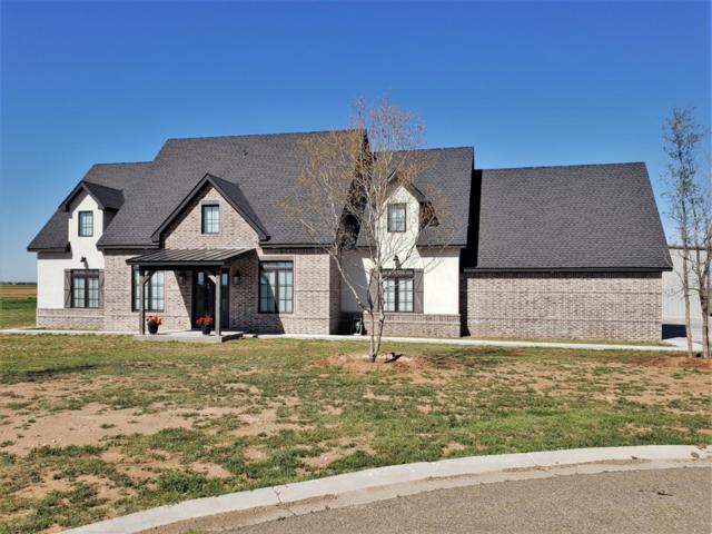 6701 N County Road 2160, Lubbock, TX 79415 (MLS #201903258) :: Reside in Lubbock | Keller Williams Realty