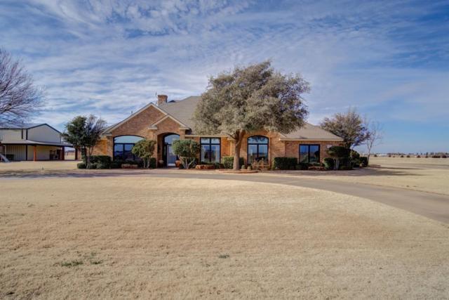 8321 4th Street, Lubbock, TX 79416 (MLS #201903301) :: McDougal Realtors
