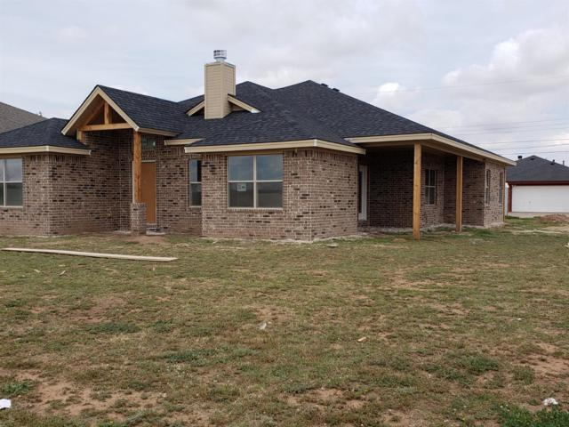 705 Holly Street, Levelland, TX 79336 (MLS #201903725) :: Reside in Lubbock | Keller Williams Realty