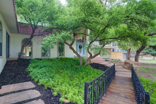 56 E Lakeshore, Ransom Canyon, TX 79366 (MLS #201904259) :: Lyons Realty