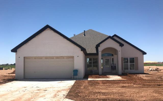 5707 116th, Lubbock, TX 79424 (MLS #201904400) :: McDougal Realtors