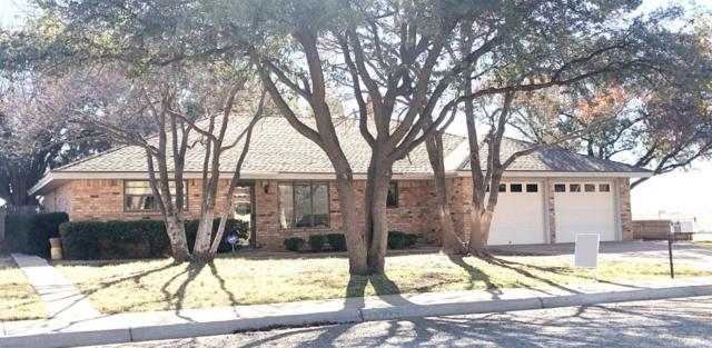 1302 W Waco Street, Brownfield, TX 79316 (MLS #201904641) :: McDougal Realtors