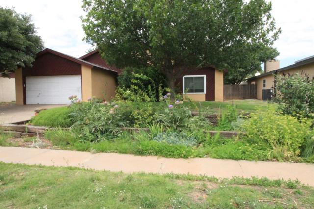 6144 38th Street, Lubbock, TX 79407 (MLS #201905337) :: Stacey Rogers Real Estate Group at Keller Williams Realty