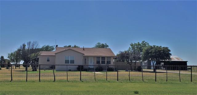 16909 N Farm Road 179, Shallowater, TX 79363 (MLS #201906247) :: Blu Realty