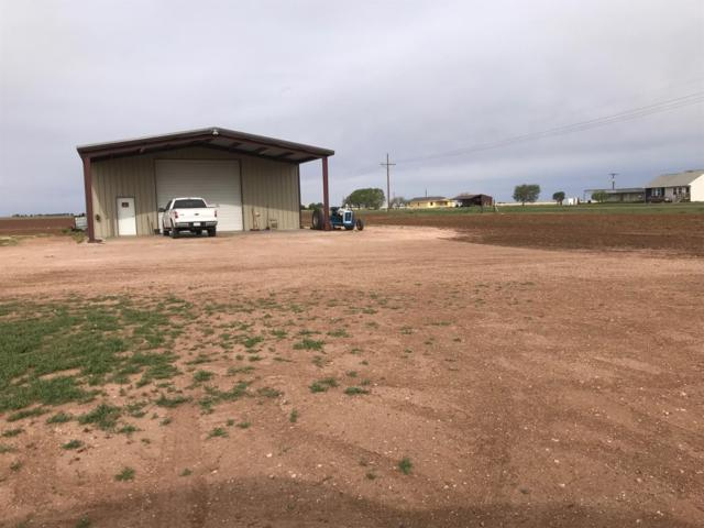 1208 County Road 119, Lorenzo, TX 79343 (MLS #201906304) :: McDougal Realtors