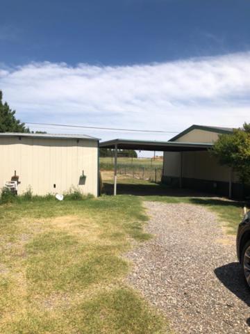 7506 N Venita Avenue, Shallowater, TX 79363 (MLS #201906369) :: Lyons Realty