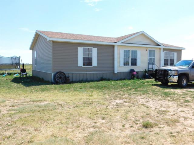 730 County Road 3125, Muleshoe, TX 79347 (MLS #201906745) :: Stacey Rogers Real Estate Group at Keller Williams Realty