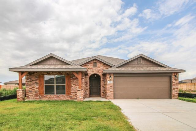 2308 141st, Lubbock, TX 79423 (MLS #201906766) :: Stacey Rogers Real Estate Group at Keller Williams Realty