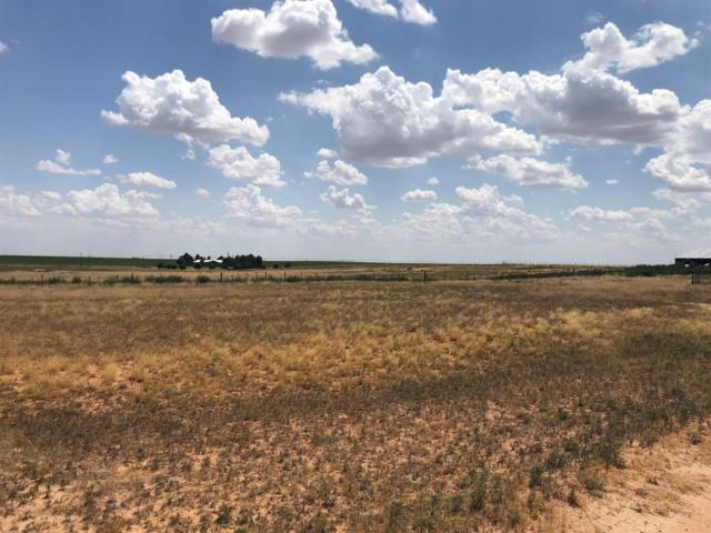 2129 County Road 355, Brownfield, TX 79316 (MLS #201907180) :: Stacey Rogers Real Estate Group at Keller Williams Realty