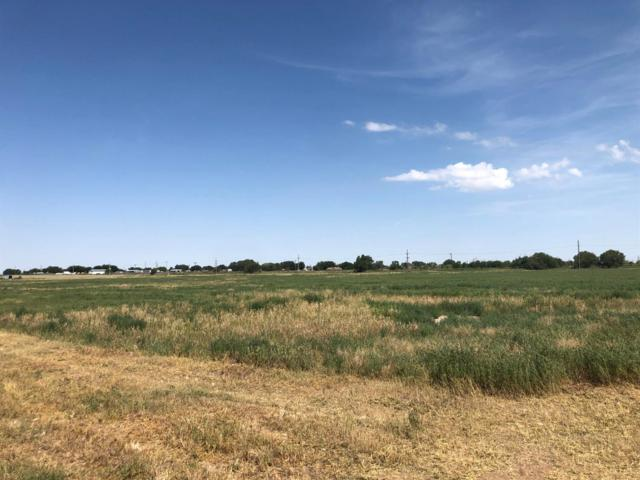 2005 W State Highway 114, Levelland, TX 79336 (MLS #201907309) :: The Lindsey Bartley Team