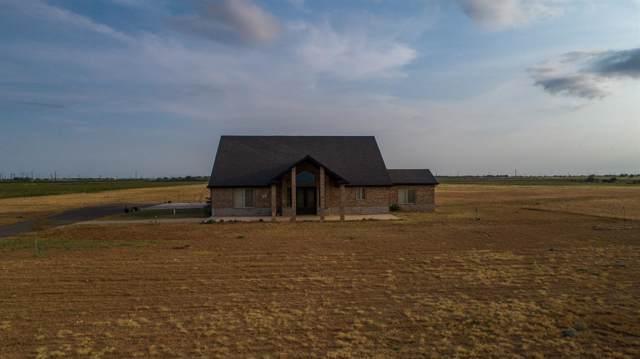 7333 County Road 6500, Lubbock, TX 79416 (MLS #201907759) :: Lyons Realty