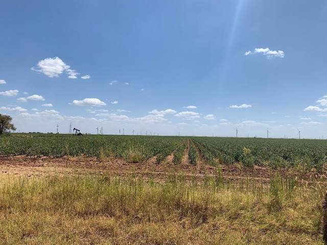 0 E Farm Road 40 Highway, Lubbock, TX 79403 (MLS #201907793) :: The Lindsey Bartley Team