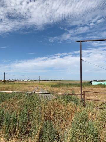 5508 County Road 1040, Lubbock, TX 79407 (MLS #201907824) :: The Lindsey Bartley Team