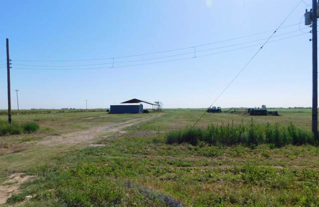 0 County Road 1038, Muleshoe, TX 79347 (MLS #201907899) :: Stacey Rogers Real Estate Group at Keller Williams Realty