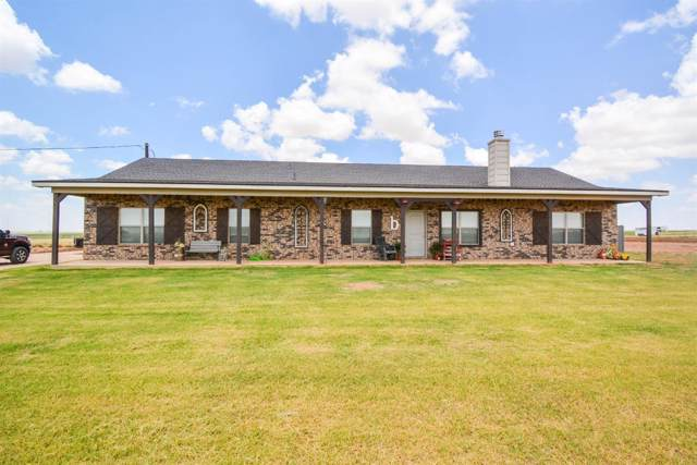 542 County Road Nora, New Home, TX 79381 (MLS #201908231) :: Lyons Realty