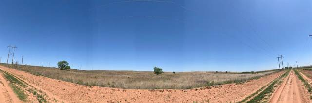 2619 County Road 322, Anton, TX 79313 (MLS #201908936) :: Lyons Realty