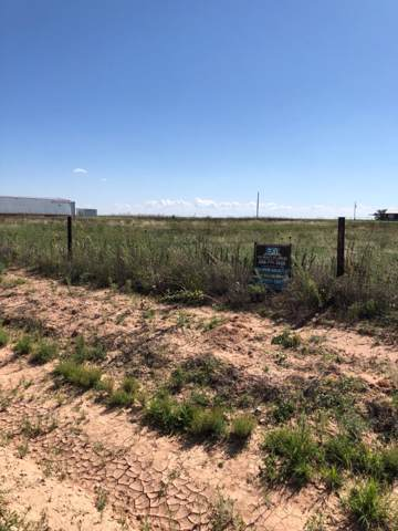 1400 County Road 7900, Lubbock, TX 79423 (MLS #201909006) :: The Lindsey Bartley Team