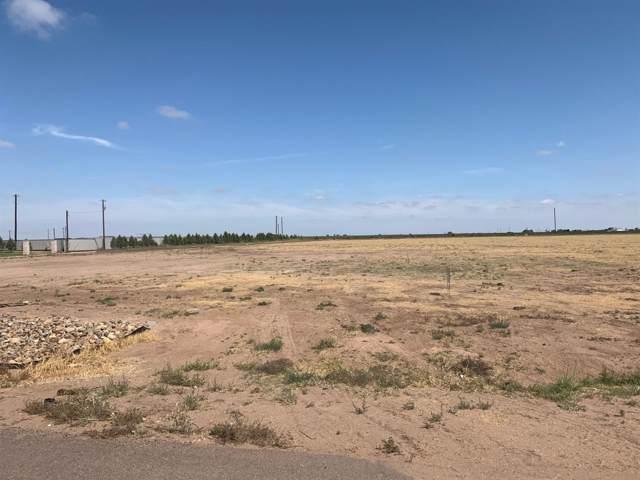 1108 Ranchland Circle, Tahoka, TX 79376 (MLS #201909699) :: The Lindsey Bartley Team
