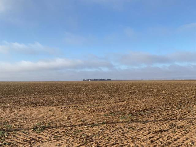 1100 County Road 6, New Home, TX 79383 (MLS #201909856) :: The Lindsey Bartley Team
