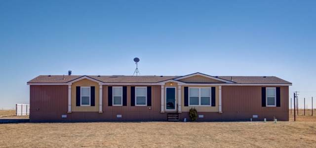 1807 S State Highway 2646, Levelland, TX 79336 (MLS #201909858) :: The Lindsey Bartley Team