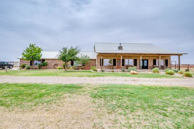 654 County Road M, New Home, TX 79383 (MLS #201910446) :: Reside in Lubbock   Keller Williams Realty