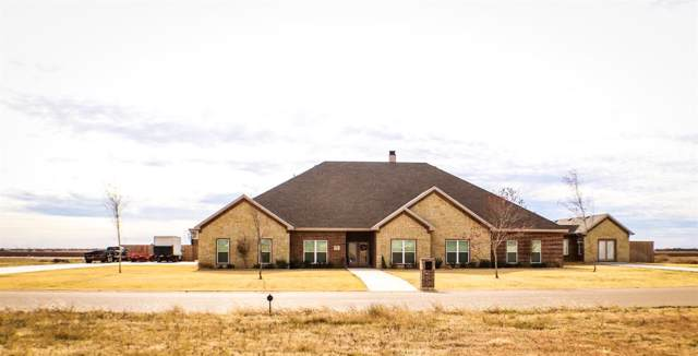 9009 County Road 6875, Lubbock, TX 79407 (MLS #201910758) :: Better Homes and Gardens Real Estate Blu Realty