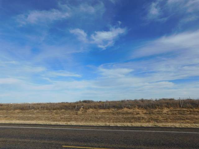 0 S State Highway 214, Muleshoe, TX 79347 (MLS #201910792) :: The Lindsey Bartley Team