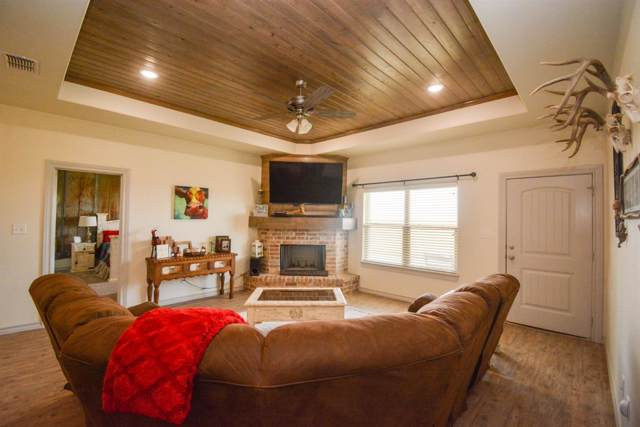 542 County Road Nora, New Home, TX 79381 (MLS #202000221) :: The Lindsey Bartley Team