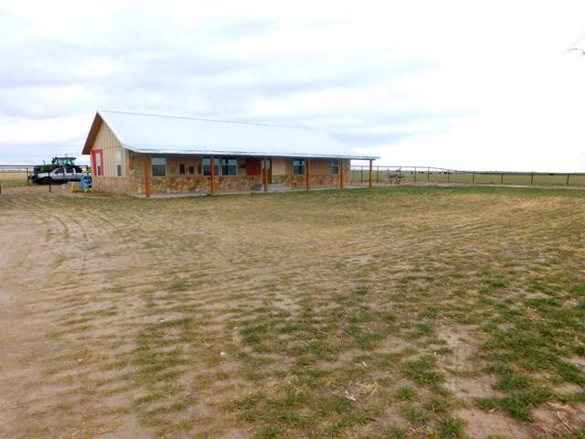 0 Farm Road 1760, Muleshoe, TX 79347 (MLS #202000320) :: The Lindsey Bartley Team