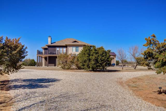 115 Sierra Vista Drive, Justiceburg, TX 79330 (MLS #202000378) :: The Lindsey Bartley Team