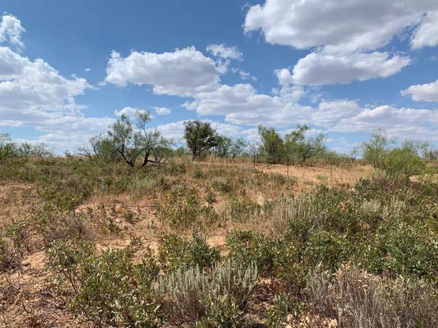 0-Ranch #1 Farm Road 261, Spur, TX 79370 (MLS #202000576) :: Lyons Realty