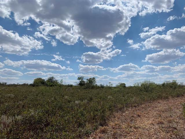 0-Ranch #4 Farm Road 261, Spur, TX 79370 (MLS #202000579) :: Lyons Realty