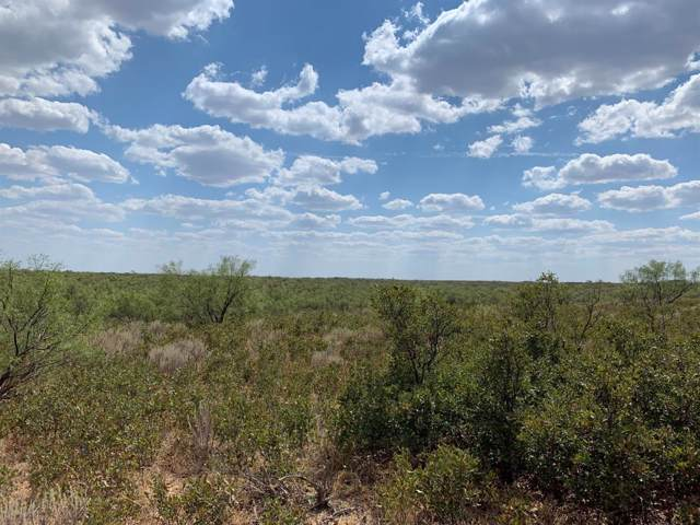 0-Ranch #5 Farm Road 261, Spur, TX 79370 (MLS #202000589) :: Stacey Rogers Real Estate Group at Keller Williams Realty