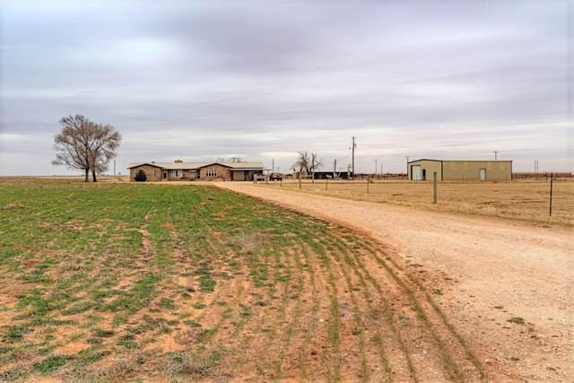 237 County Road 692, Seagraves, TX 79359 (MLS #202000639) :: McDougal Realtors