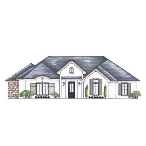 3719 118th Street, Lubbock, TX 79423 (MLS #202000850) :: Lyons Realty