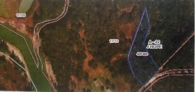 0 Hopes Creek Road, Bryan, TX 77845 (MLS #202000876) :: Lyons Realty