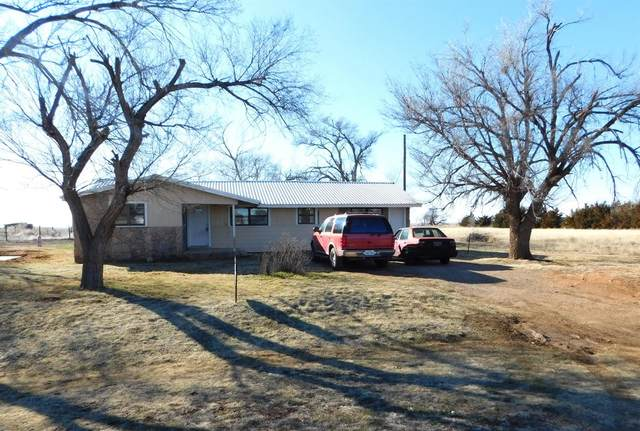 1932 S State Highway 214, Muleshoe, TX 79347 (MLS #202001458) :: The Lindsey Bartley Team
