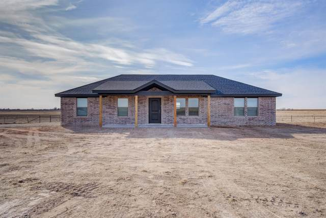204 N Farm Road 2378, Shallowater, TX 79363 (MLS #202001640) :: Better Homes and Gardens Real Estate Blu Realty