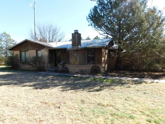 1240 County Road 1078, Muleshoe, TX 79347 (MLS #202001708) :: Lyons Realty