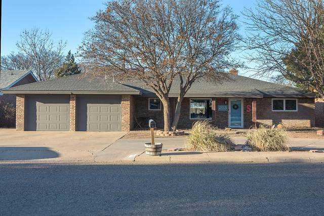 213 Cottonwood Lane, Levelland, TX 79336 (MLS #202001776) :: Stacey Rogers Real Estate Group at Keller Williams Realty
