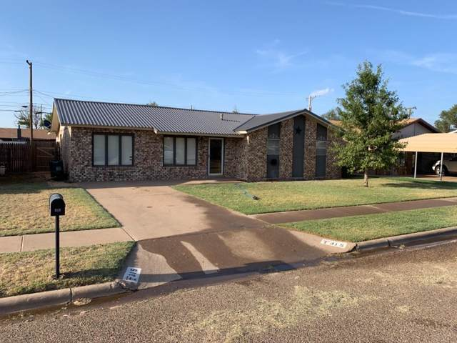 315 Michael Street, Levelland, TX 79336 (MLS #202001986) :: Stacey Rogers Real Estate Group at Keller Williams Realty