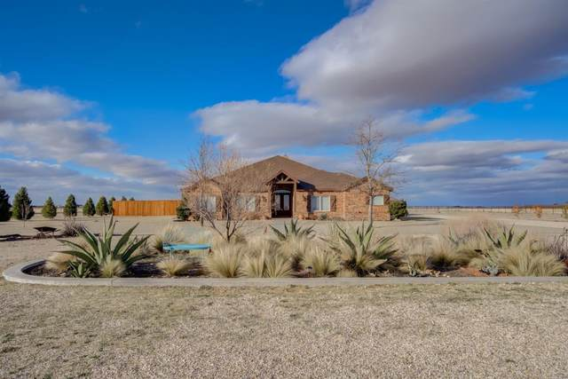 4836 County Road 7900, Lubbock, TX 79424 (MLS #202002130) :: Stacey Rogers Real Estate Group at Keller Williams Realty