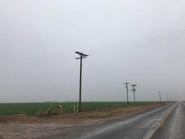0-Lot 3 Farm Road 597, Abernathy, TX 79311 (MLS #202002425) :: The Lindsey Bartley Team