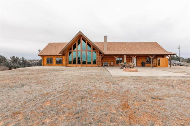 2537 Ward Road, Lake Alan Henry, TX 79549 (MLS #202002508) :: Stacey Rogers Real Estate Group at Keller Williams Realty