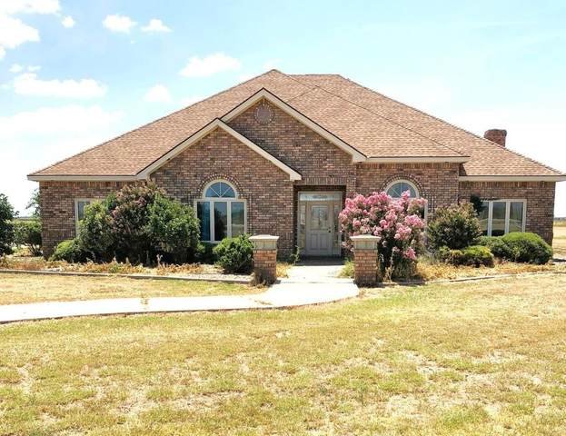 1819 County Road 130, Plainview, TX 79072 (MLS #202002685) :: Stacey Rogers Real Estate Group at Keller Williams Realty